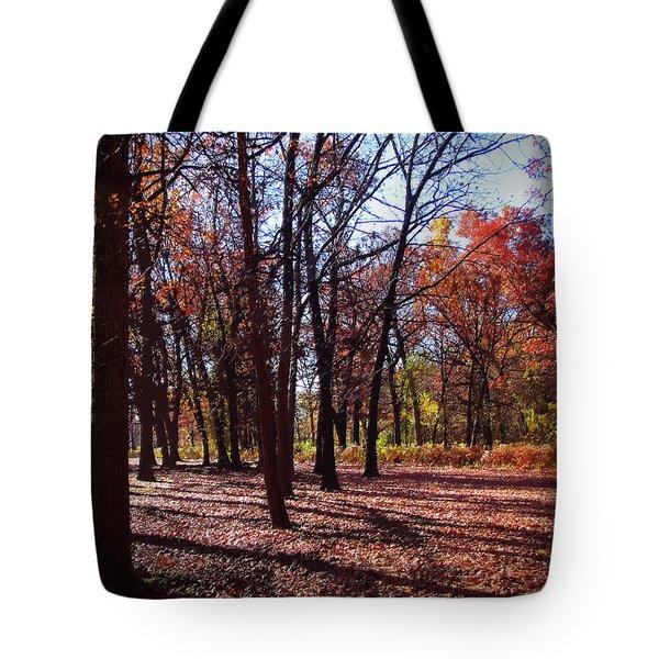 Fall Tree Shadows 2 Tote Bag by Cedric Hampton