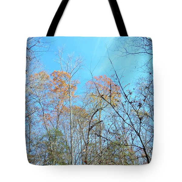 Tote Bag featuring the photograph Fall Trees by Kay Gilley