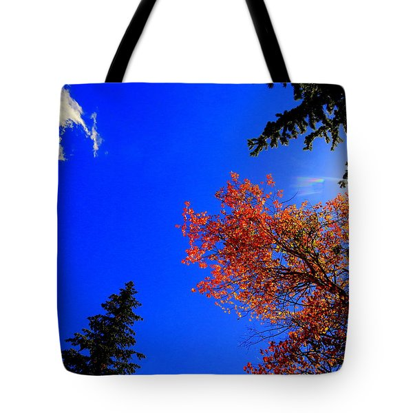 Tote Bag featuring the photograph Fall Up by Karen Shackles