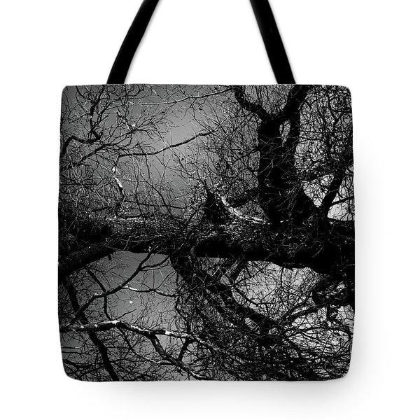 Fallen Dark Wood Forest Tote Bag
