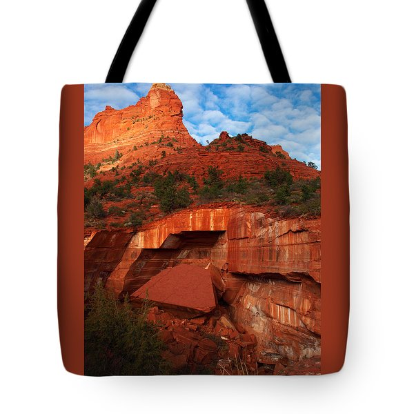 Tote Bag featuring the photograph Fallen by James Peterson