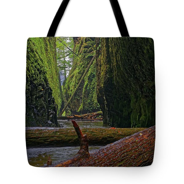 Tote Bag featuring the photograph Fallen by Jonathan Davison
