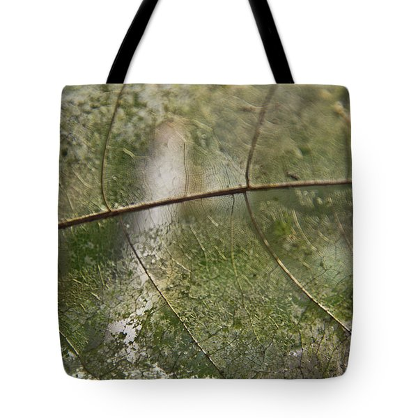 Tote Bag featuring the photograph fallen Leaf by Debbie Cundy