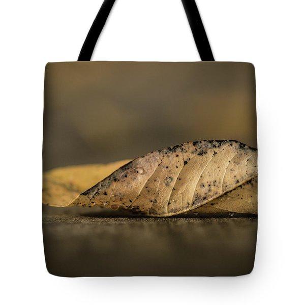 Fallen Leaf Tote Bag by Hyuntae Kim