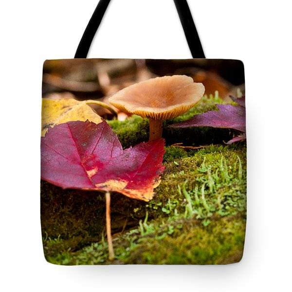 Fallen Leaves And Mushrooms Tote Bag