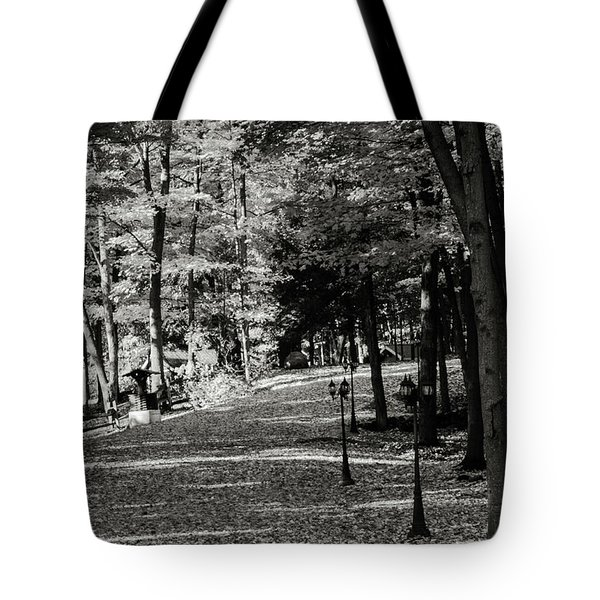 Fallen Leaves. Tote Bag