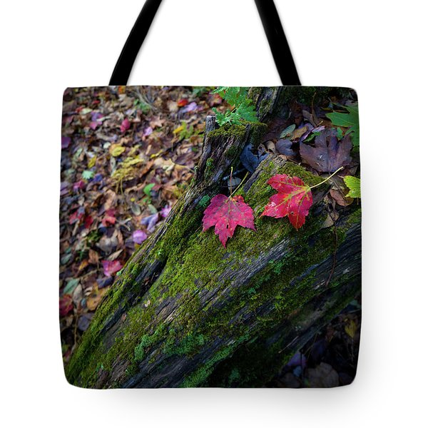 Tote Bag featuring the photograph Fallen Leaves On The Limberlost Trail by Lori Coleman