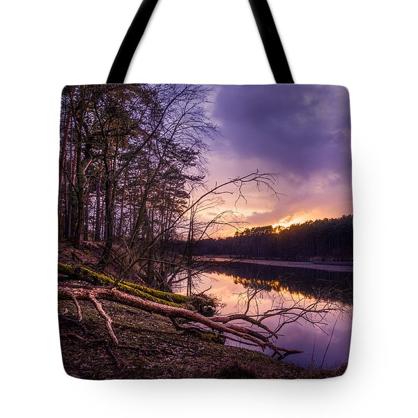 Tote Bag featuring the photograph Fallen To The Setting Sun by Dmytro Korol