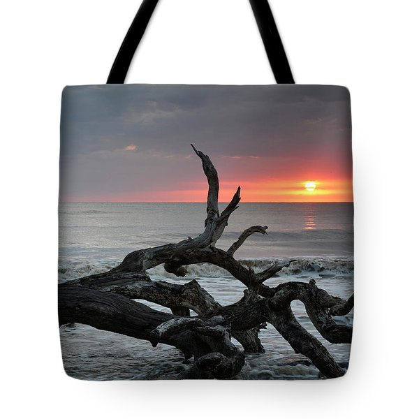 Fallen Tree In Ocean At Sunrise Tote Bag by Bruce Gourley