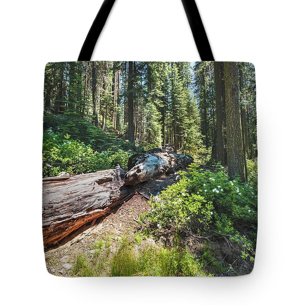 Tote Bag featuring the photograph Fallen Tree- by JD Mims