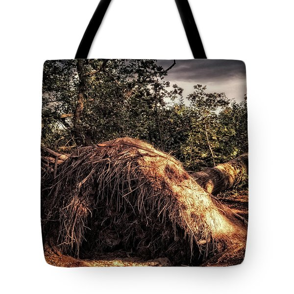 Fallen Tote Bag by Wim Lanclus