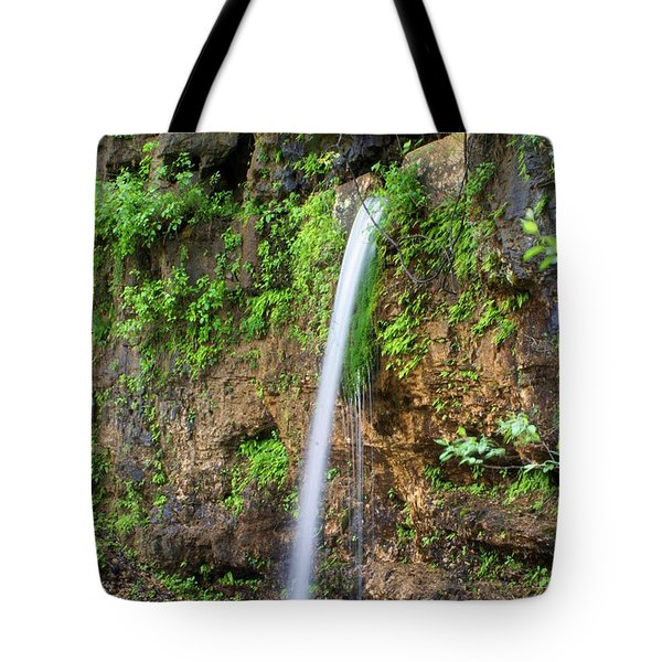 Falling Spring Tote Bag by Marty Koch