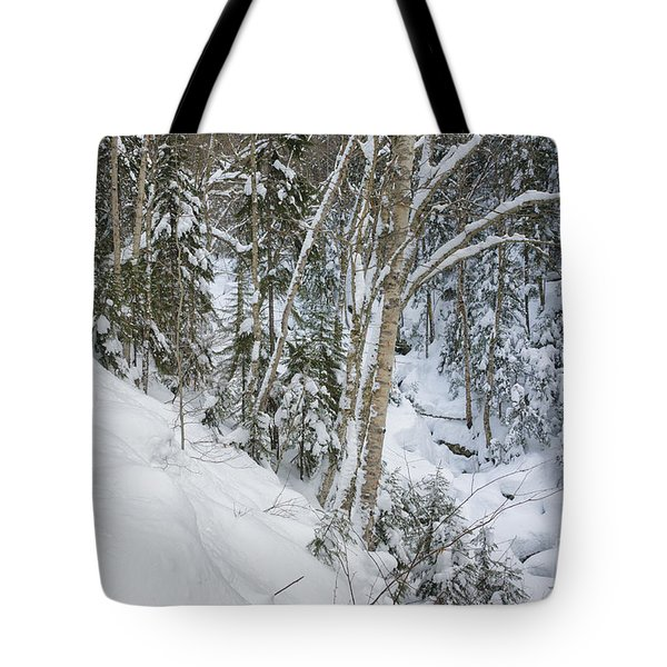 Falling Waters Trail - White Mountains New Hampshire  Tote Bag