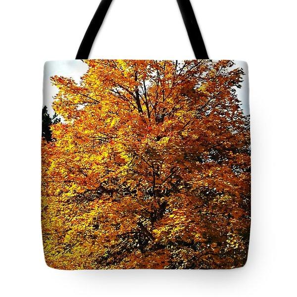 Fallish Yellowish Tote Bag