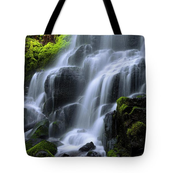 Tote Bag featuring the photograph Falls by Chad Dutson