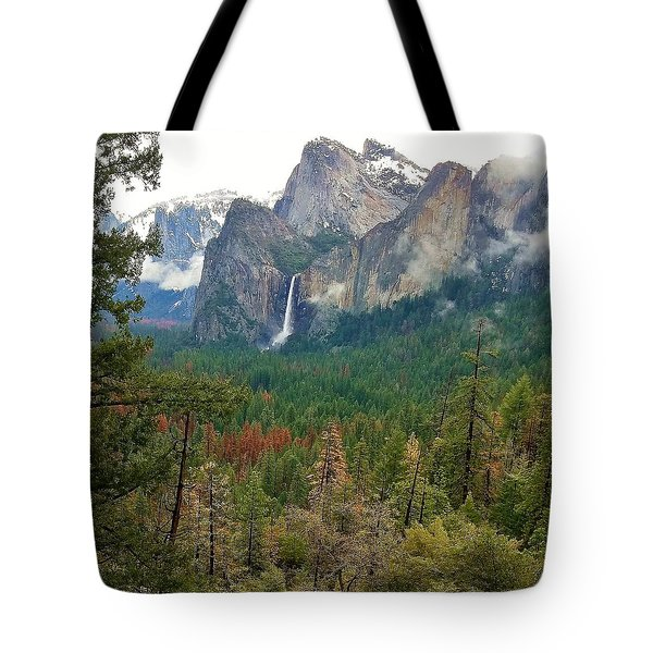 Tote Bag featuring the photograph Falls In Yosemite B by Phyllis Spoor