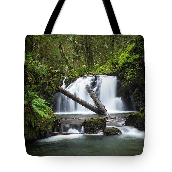 Falls On Canyon Creek Tote Bag