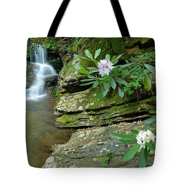 Falls On Catawba Creek Tote Bag