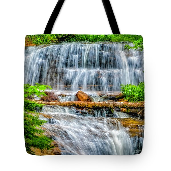 Tote Bag featuring the photograph Falls On Sable Creek by Nick Zelinsky