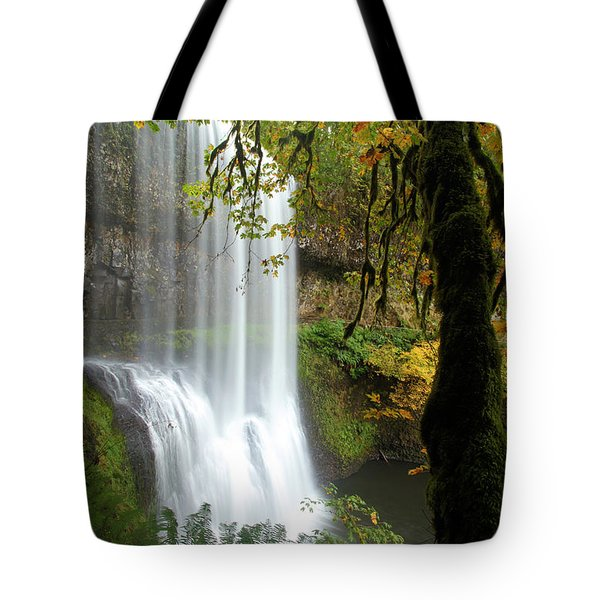 Falls Though The Trees Tote Bag