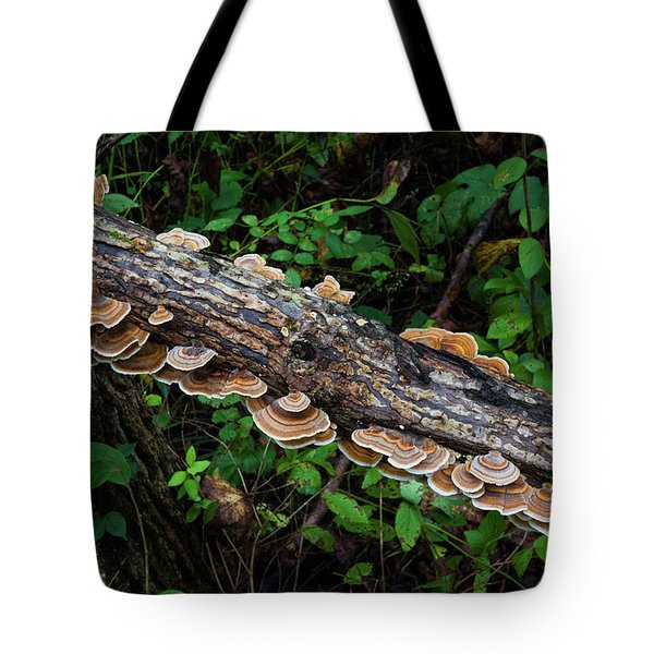 Tote Bag featuring the photograph False Turkeytail by Lon Dittrick