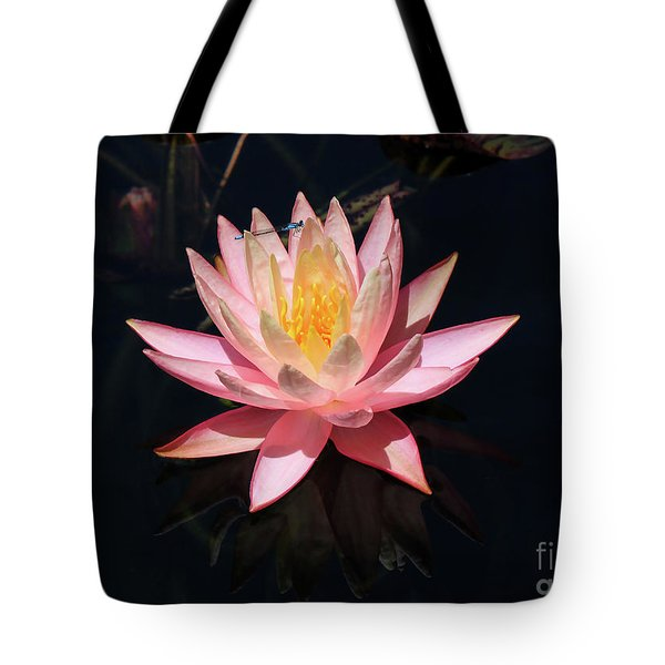 Familiar Bluet Damselfly And Lotus  Tote Bag