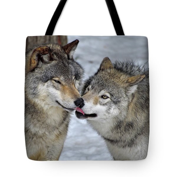 Tote Bag featuring the photograph Familiar by Tony Beck