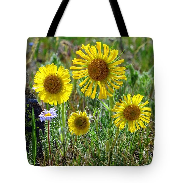 Family Tote Bag by Karen Shackles