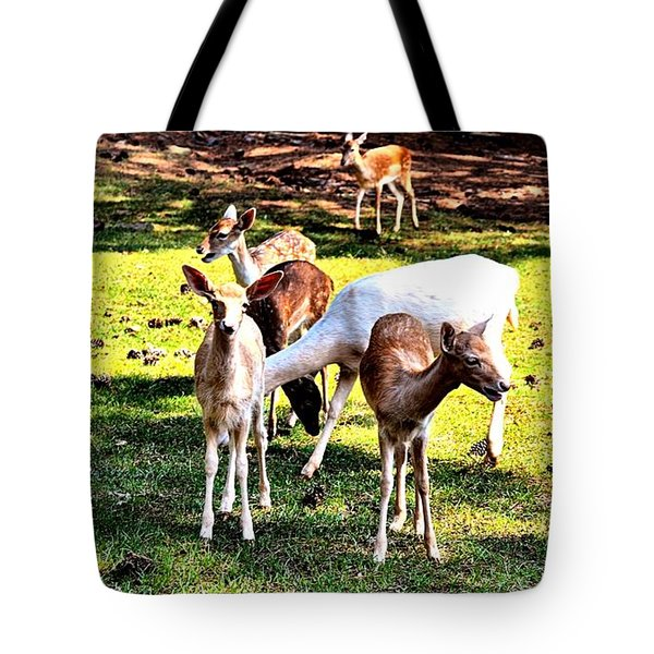 Family Of Deer Tote Bag
