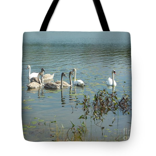 Family Of Swans Tote Bag