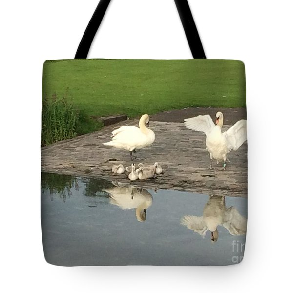 Family Outing Tote Bag by David Grant