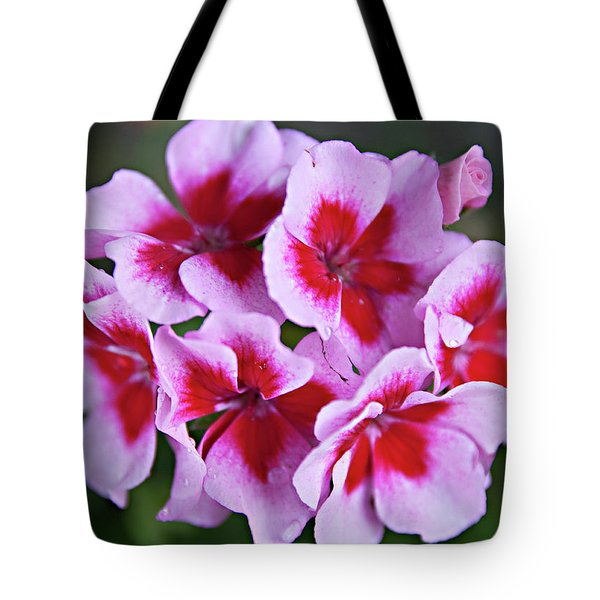 Tote Bag featuring the photograph Family by Sherry Hallemeier