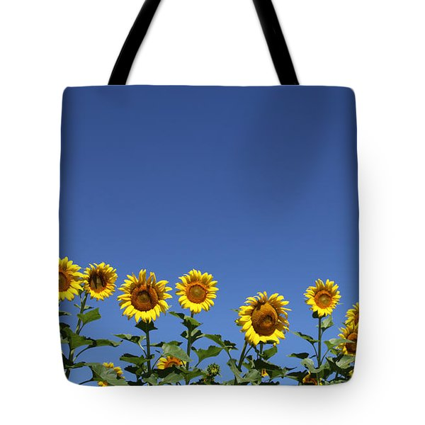 Family Time Tote Bag by Amanda Barcon