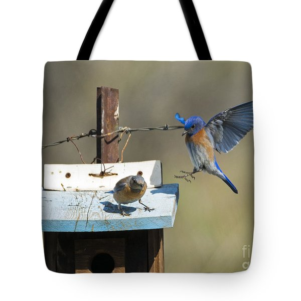 Family Time Tote Bag by Mike Dawson