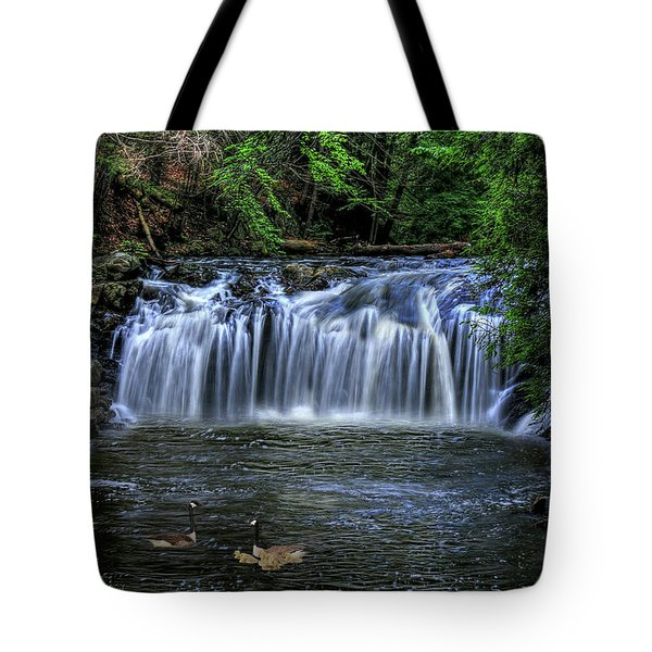 Family Time Tote Bag by Sharon Batdorf