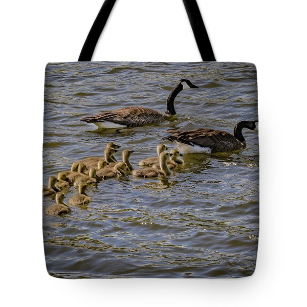 Family Tradition Tote Bag by Ray Congrove