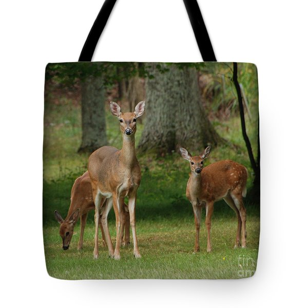 Family Walk Tote Bag