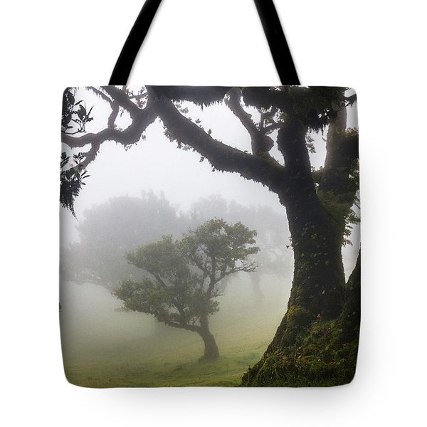 Fanal Tote Bag by Evgeni Dinev