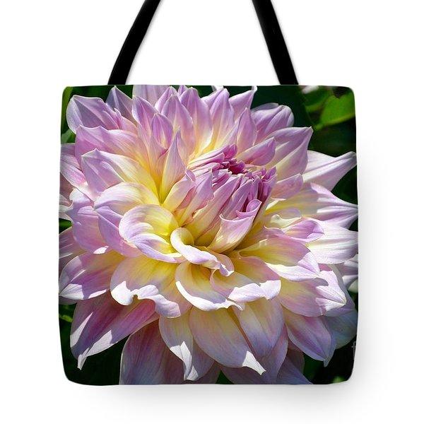Fancy Dahlia In Pinks Tote Bag