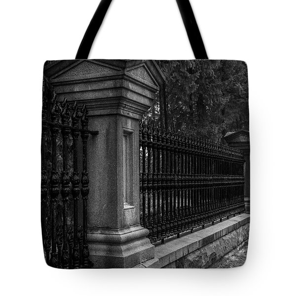 Fancy Fence Tote Bag by Celso Bressan