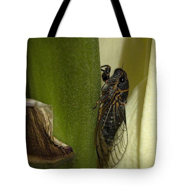 Fancy Meeting You Here Tote Bag