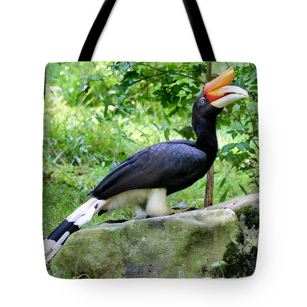 Fancy Pants Tote Bag by Kristin Elmquist