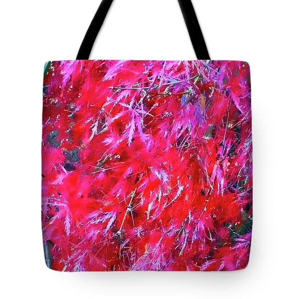 Tote Bag featuring the photograph Fancy Pants by Roberta Byram