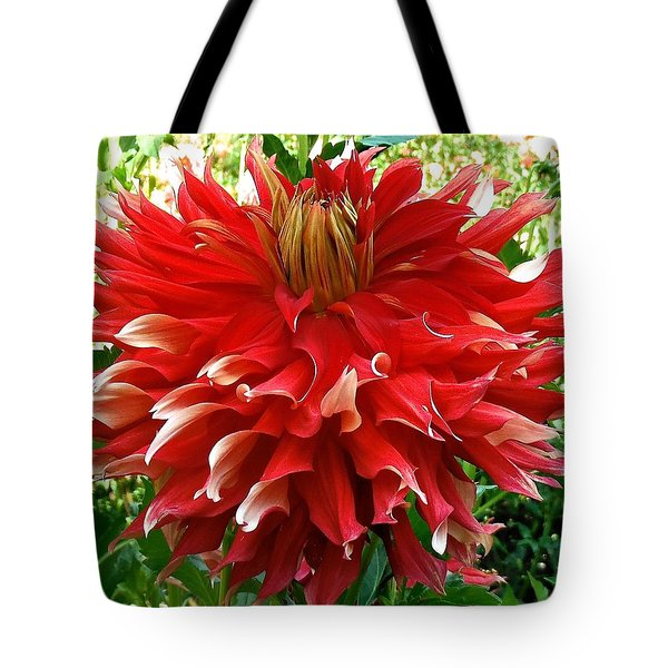 Fancy Red Dahlia Tote Bag