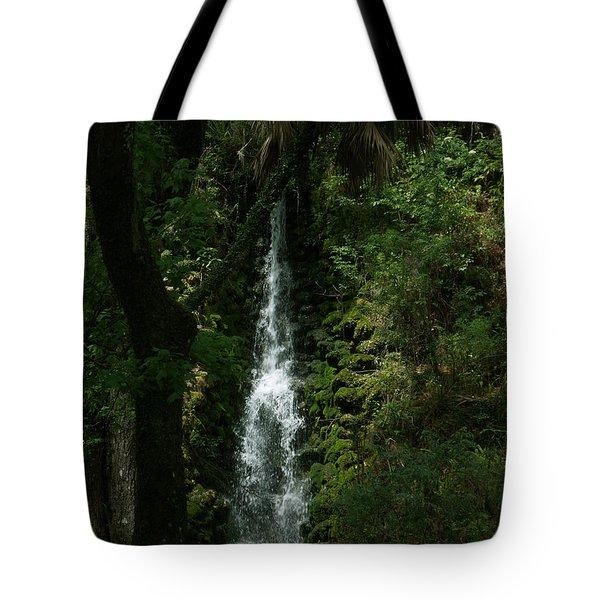 Fantasy Falls  Tote Bag