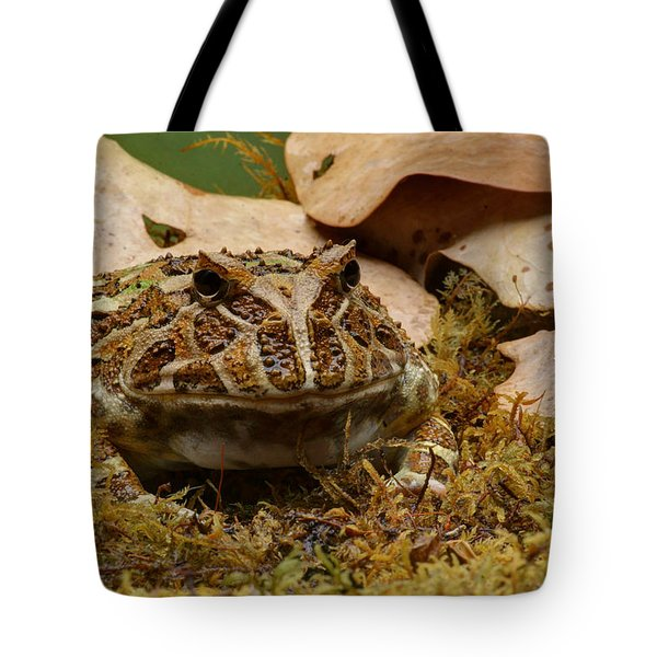 Tote Bag featuring the photograph Fantasy - Horned Frog by Nikolyn McDonald
