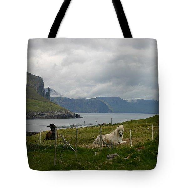 Faroe Islands Horses Tote Bag by Susanne Baumann