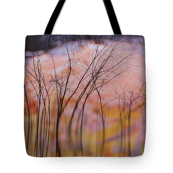 fantasy landscape trees - Fleeting Forest Tote Bag