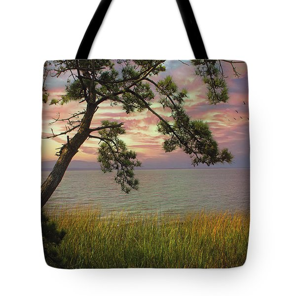 Farewell To Another Day Tote Bag