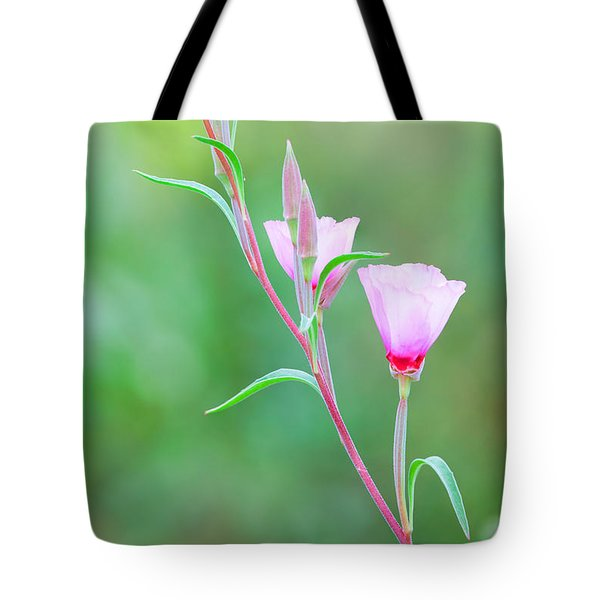 Tote Bag featuring the photograph Farewell To Spring by Ram Vasudev